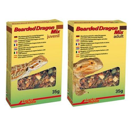 Bearded Dragon Mix