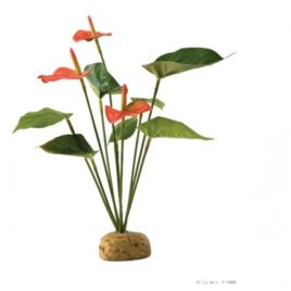 Anthurium Kunstpflanze