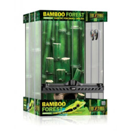 Bamboo Forest Kit Terrarium