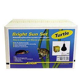 Bright Sun Turtle Set