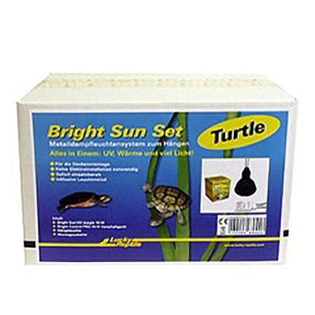 Bright Sun Turtle Set