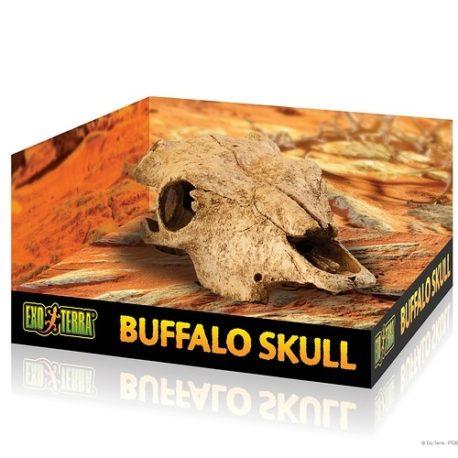 Buffalo Skull Höhle