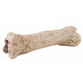 Dinosaur Bone Höhle