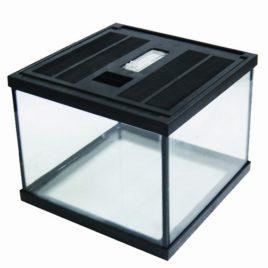 Easy Terra Glas Terrarium