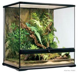 Glas Terrarium Exo Terra mit Rückwand