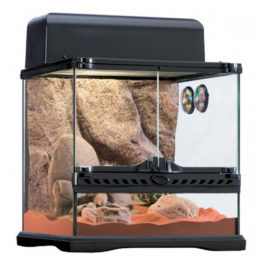 Habitat Kit Desert Glasterrarium