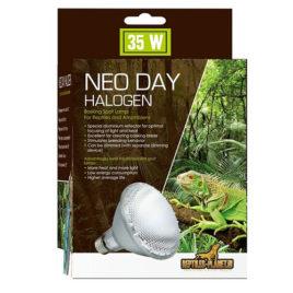 Neo Day Halogen