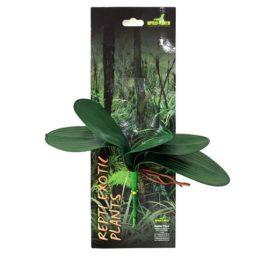Phalaenopsis Kunstpflanze