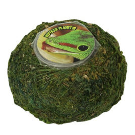 Repti Moss Ball Jelly