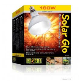 Solar Glo