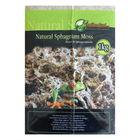 Natural Sphagnum Moos