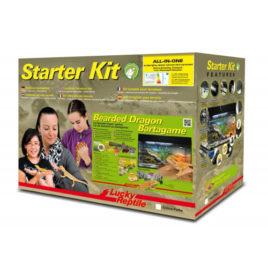 Starter Kit Bartagame Terrarium