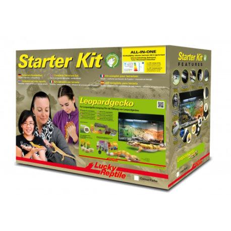 Starter Kit Leopardgecko Terrarium