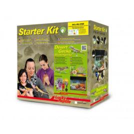 Starter Kit Wüstengecko Terrarium