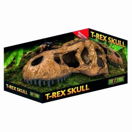 T-Rex Skull Schädel