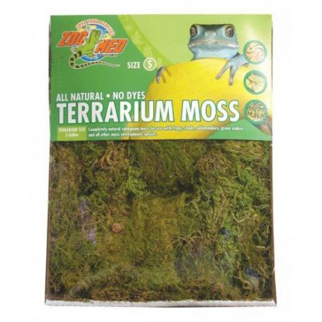 Terrarium Moos