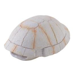 Tortoise Skeleton Höhle