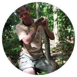 Reise 2 Reptilien Thailands